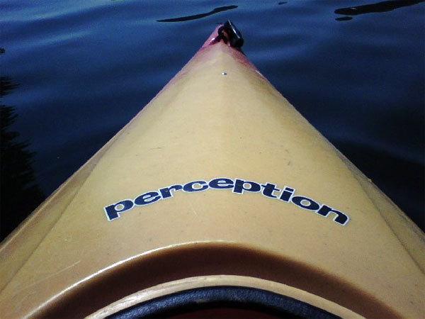 Wperception