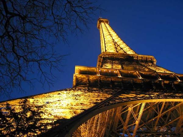 Eiffelbranch