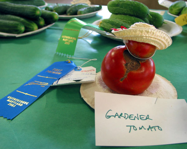 Gardenertomato